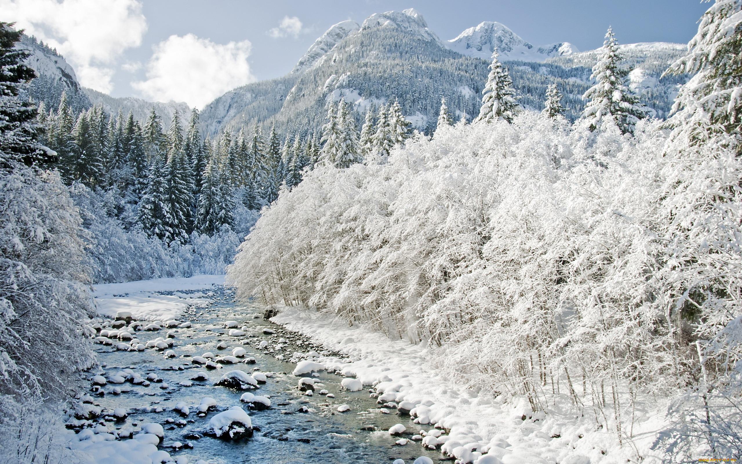 картинки река заснеженная смотрю